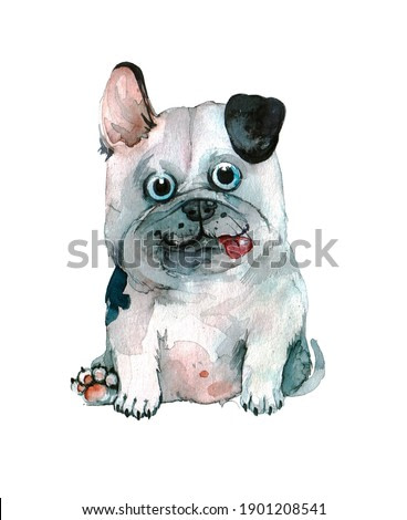 funny cartoon french bulldog on a neutral background. watercolor animal illustration or pet print