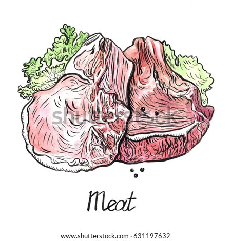 Meat and lettuce leaves, hand painted illustration, watercolor and ink outline