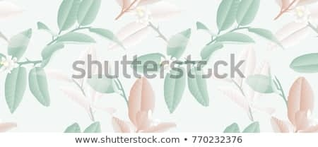 Seamless pattern, hand drawn pastel green, brown and white lime flowers and leaves on light green background