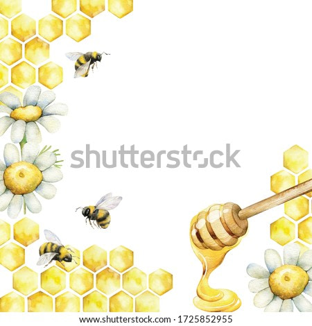 Watercolor frame with honeycombs and a sweet spoon of honey, decorated with chamomile flowers and bee-bees. Hand painted illustration for your design.