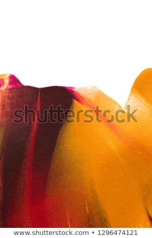 Abstract colorful painting  background texture
