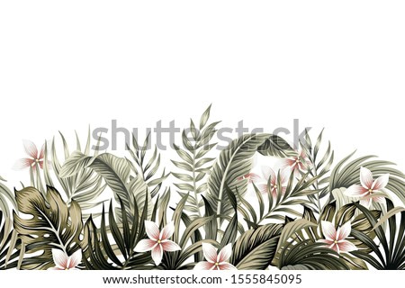 Tropical vintage botanical palm leaves, banana leaves, plant floral, plumeria flower seamless border white background. Exotic green jungle wallpaper.