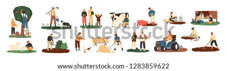 Set of farmers or agricultural workers planting crops, gathering harvest, collecting apples, feeding farm animals, carrying fruits, milking cow, working on tractor. Flat cartoon vector illustration.