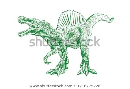 Graphical green sketch of spinosaurus isolated on white background,vector illustration, dinosaur