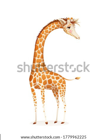 Giraffe animal character isolated on white vector design for kids and adults. T shirt, poster and other art print, zoo and jungle fauna. Vector realistic cartoon design.