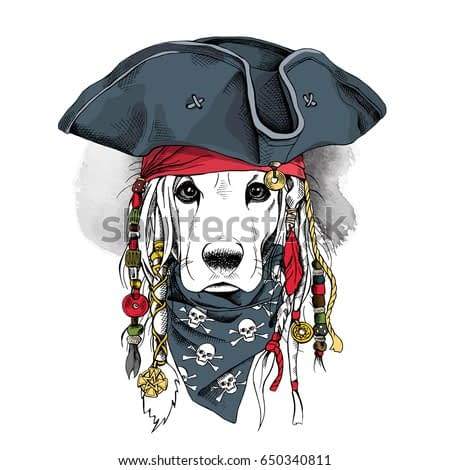 Portrait of a Cocker Spaniel dog in Pirate hat, bandana and with a dreadlocks. Vector illustration.