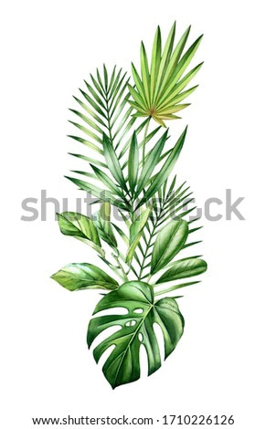 Watercolor tropical bouquet. Jungle greenery in vertical arrangement. Exotic palm leaves, monstera, isolated on white. Botanical hand drawn illustration