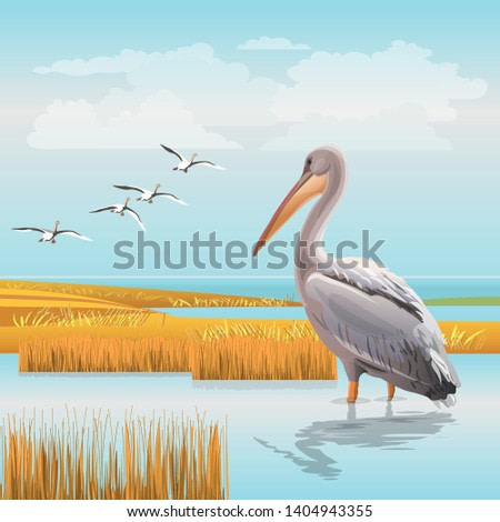 Water landscape with a pelican and a flying flock of birds. Realistic vector illustration