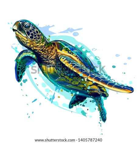 Sea turtle. Realistic, artistic, colored drawing of a sea turtle on a white background in a watercolor style.
