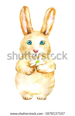 cute fluffy rabbit with flower on a white background. watercolor illustration for print for sale