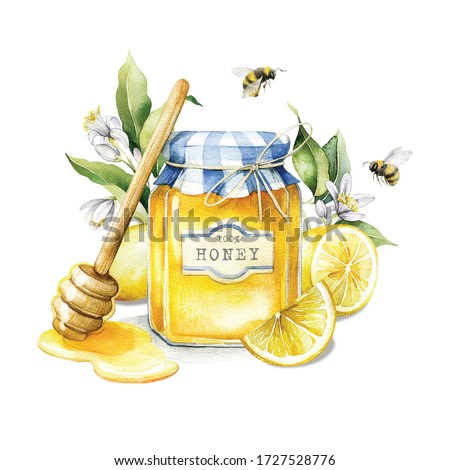 Watercolor illustration of sweet honey. Picture for your design with honey, branches of ripe lemons and bees.