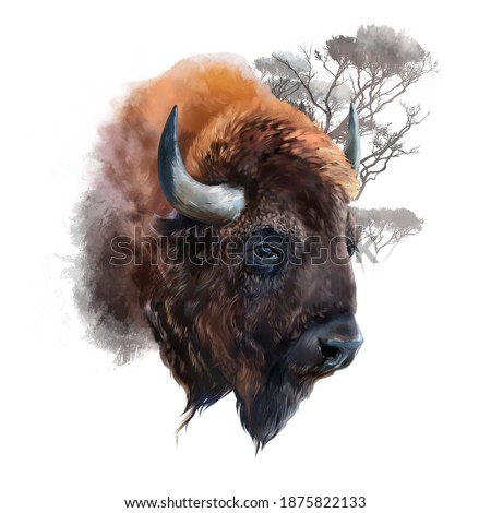 The head of a European bison. Watercolor illustration