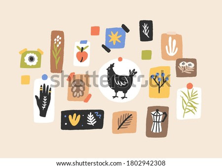 Wall with colorful cute images and posters vector flat illustration. Modern indoor decoration pictures with plants, chicken and ethnic symbol isolated. Abstract composition for house interior