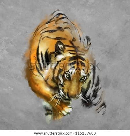 painting a tiger on the wall