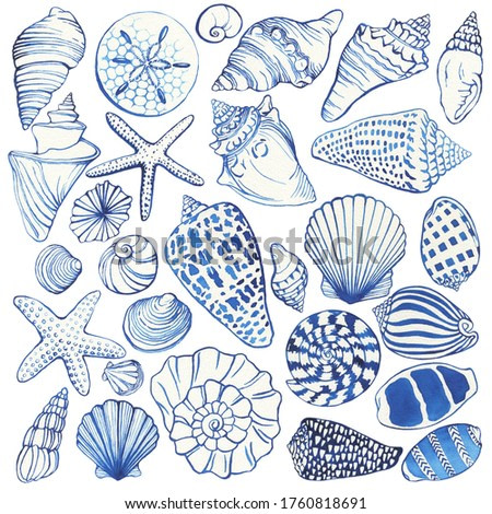 Set of blue seashells and starfish, marine design. Watercolor hand drawn painting illustration isolated on white background.