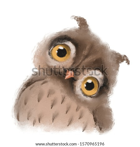 Cute hand drawn owl forest bird, woodland watercolor animal portrait