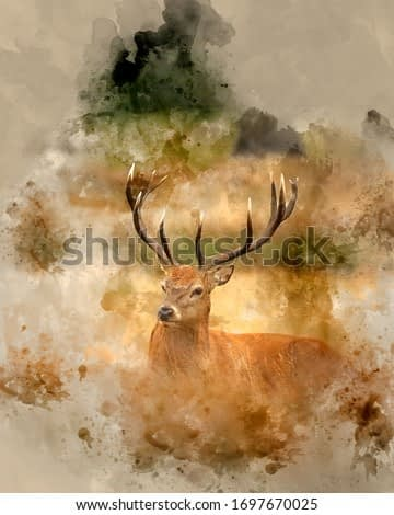 Digitally created watercolor painting of Beautiful red deer stag Cervus Elaphus in Autumn Fall woodland landscape during the rut mating seson