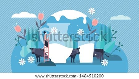 Milk vector illustration. Flat tiny fresh cow beverage drink persons concept. Delicious and healthy dairy product for calcium and protein nutrition. Farming business with organic animal lactose liquid