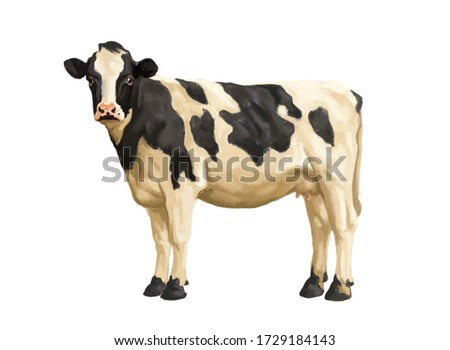 Cow watercolor illustration isolated on white