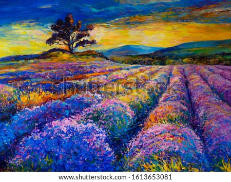 Oil painting on canvas. Lavender field. Modern art.