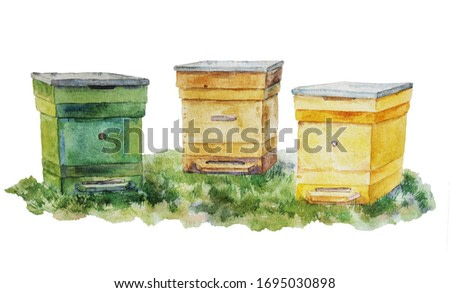 three beautiful bee hives on the grass watercolor drawing