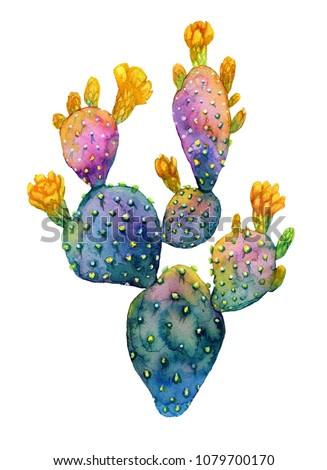 Watercolor hand drawn cactus. Opuntia blooming with yellow flowers. Botanical trendy and bright illustration.