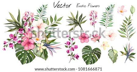 Tropical vector flowers. card with floral illustration. Bouquet of flowers with exotic Leaf isolated on white background. composition for invitation to party or holiday