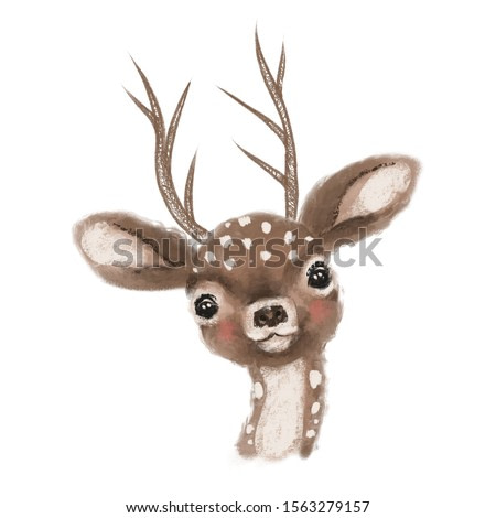Cute hand drawn deer, fawn, woodland watercolor animal portrait