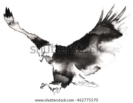 black and white monochrome painting with water and ink draw eagle bird illustration