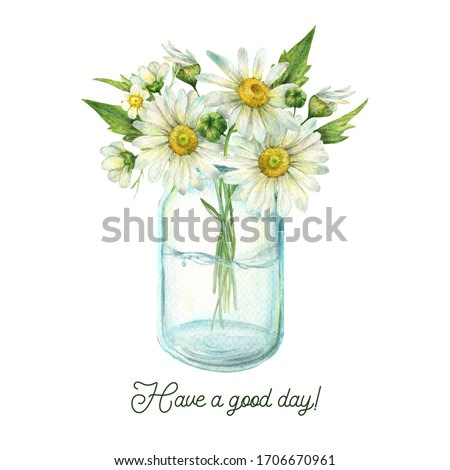 Flowers watercolor painting, glass jar with chamomile and leaves, floral clip art for greeting card, invitation, poster, wedding decoration and other images. Illustration isolated on white.