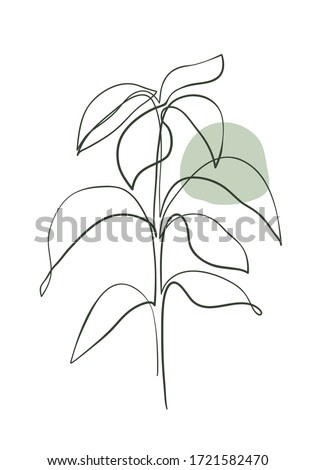 Leaves of avocado tree line art . Continuous line hand drawing art. Abstract minimal botanical art.