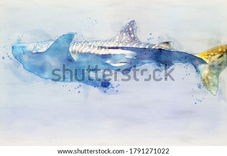 Watercolor Painting of Whale Shark