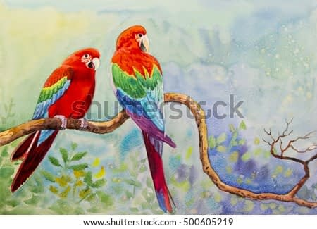 Watercolor landscape original painting on paper colorful of Macaw bird couple bird on a branch amidst beautiful nature and emotion in cloud on the sky  background