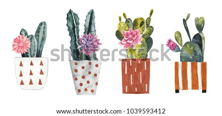 Watercolor cacti in decorative flowerpots on white isolated background