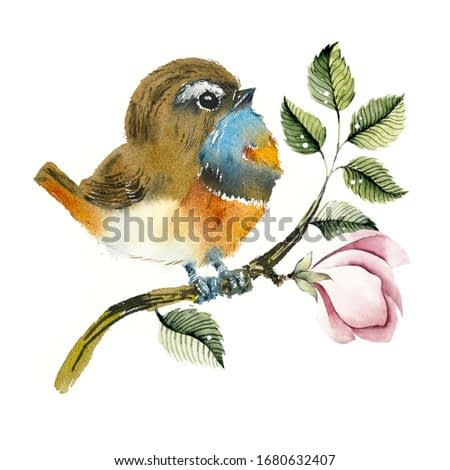 Bluethroat on a branch. Pattern with bird. Watercolor hand drawn illustration