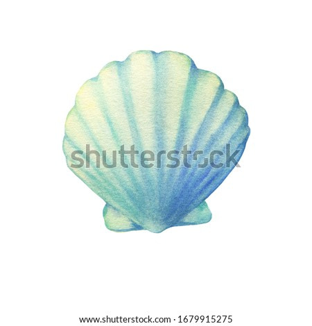 Illustrations of underwater life objects - blue sea shell, marine design. Watercolor hand drawn painting illustration isolated on white background.