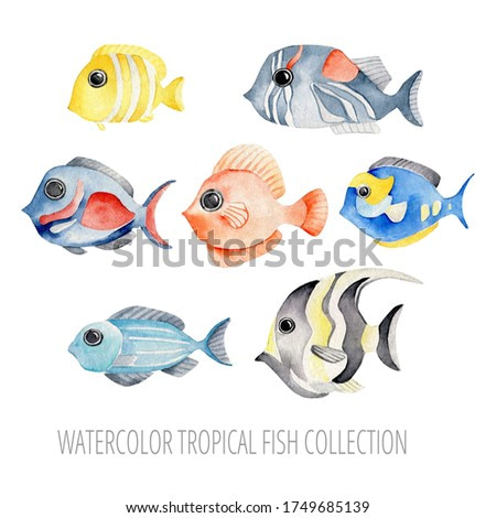Hand drawn watercolor tropical fishes set.Exotic fish isolated on white background