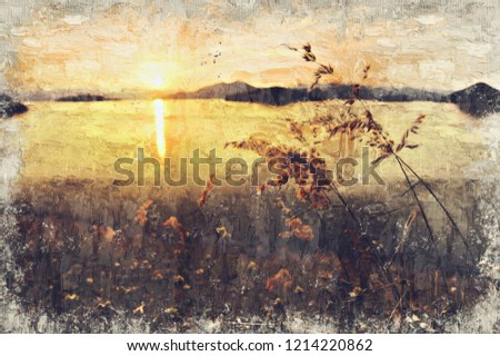 Meadow and sunset. Digital Art Impasto Oil Painting by Photographer.