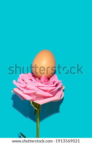 the easter egg on a beautiful colorful rose close up