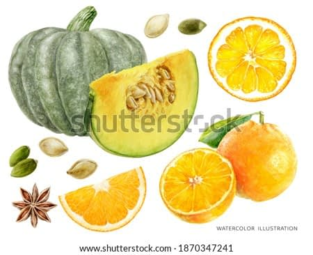 Pumpkin and pumpkin seeds orange fruit anise star watercolor illustration isolated on white background