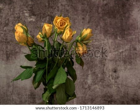 Colorful field flowers ideal in the art of still life photography