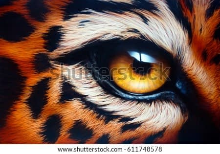 Leopard's eye. Airbrush painting. Hand drawing