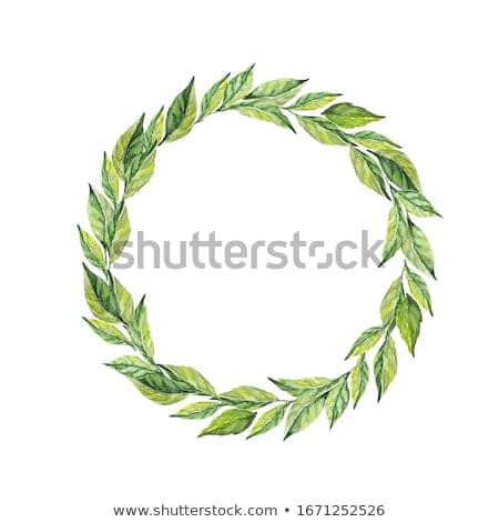 Laurel wreath. Frame from leaves. Watercolor hand drawn illustration. Border for invitation, congratulations, cards, photos