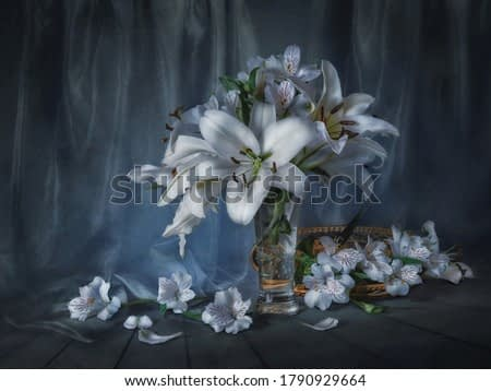 Still life with white lilies on a dark background.