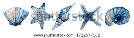 Set of sea creatures. Blue watercolor ocean starfish and seashell. Hand drawn illustration