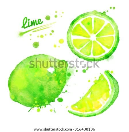 Watercolor hand drawn illustration of whole lime fruit and slices. With paint splashes.