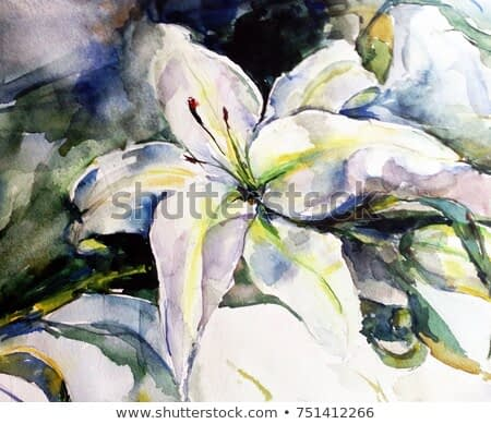 watercolor art background floral flower white lily delicate bright wet wash textured  decoration  nature handmade beautiful colorful romantic garden wedding