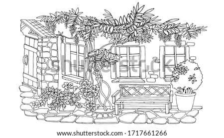 coloring, cute courtyard with a bench under the windows, wisteria bush, ivy, black and white, vector