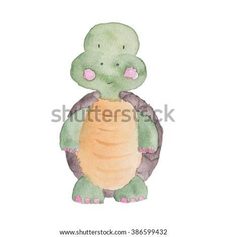 Turtle Watercolor Illustration