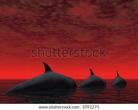 Three dolphins and a brilliant red sky